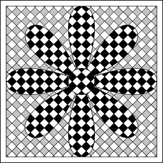 flower x-treme color 1